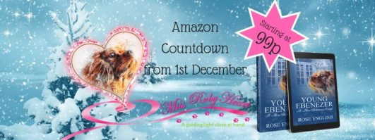 Amazon Countdown